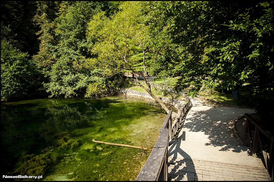 Vrelo Bosna